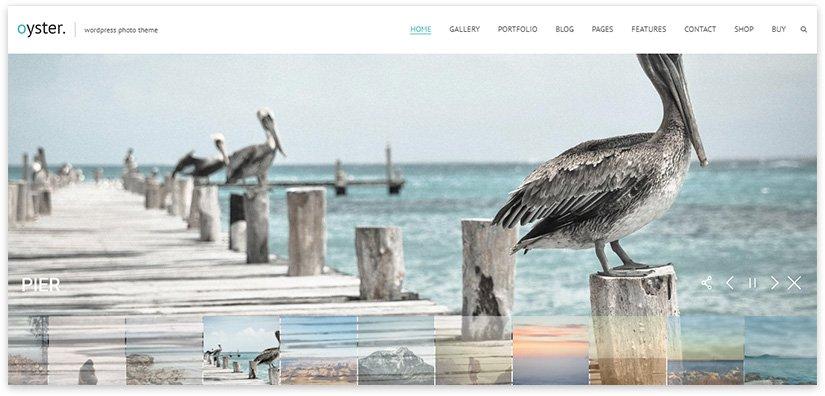 сайт с большими фотографиями