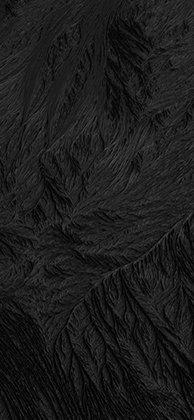 black-new-i-6s