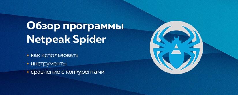 Обзор программы netpeak spider
