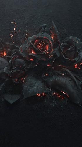 Розы в огне