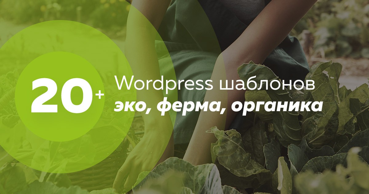 20 шаблонов wordpress органика