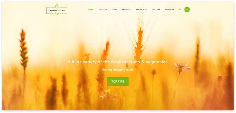 Wordpress шаблон органические продукты