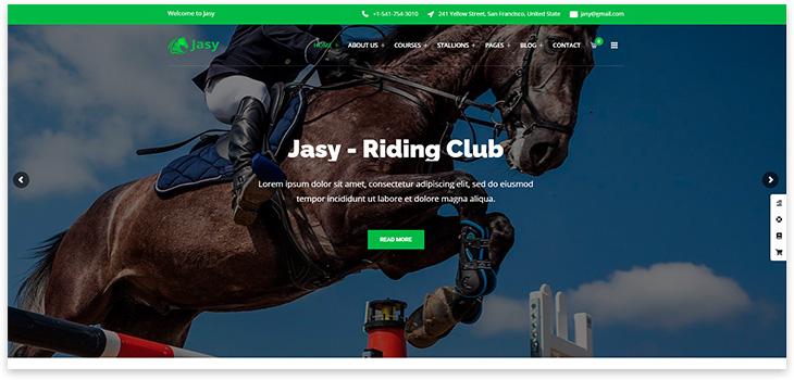 Шаблон сайта конный спорт
