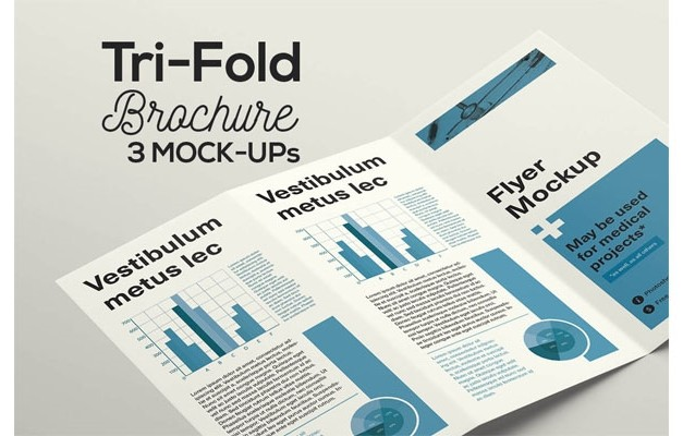 3 Tri-Fold Flyer Mock-ups