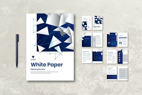 White Paper Book Report